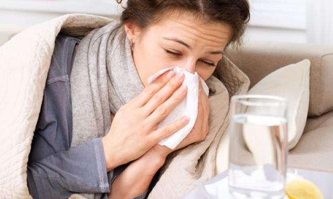 Libera las vías respiratorias con orégano